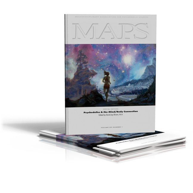"Picture of the M.A.P.S. Bulletin Cover featuring my painting, ""Return Home"""